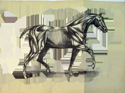 creepy pasta horse