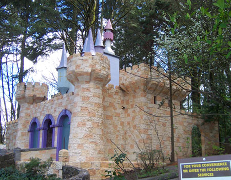 enchanted forest castle